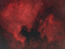 Pelikan- Nordamerika-Nebel_1